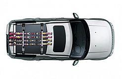 LR006849 Dachskitraeger