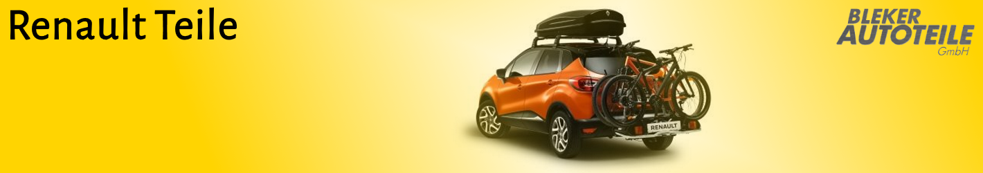 Renault Original Zubehör